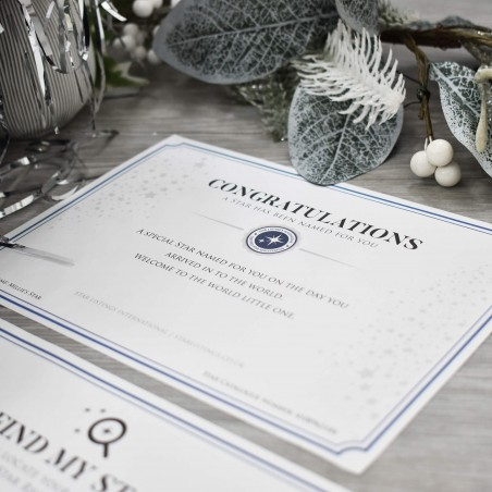 Name a Star - Bear Gift Set